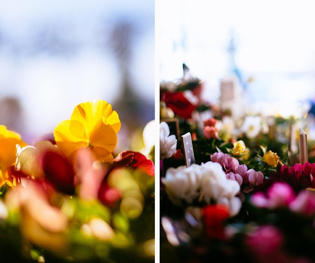 Les fleuristes à Lège Cap Ferret
