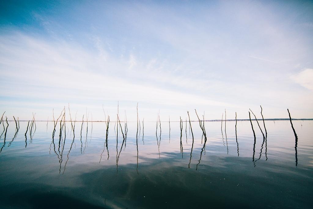 balade sur le bassin d'arcachon