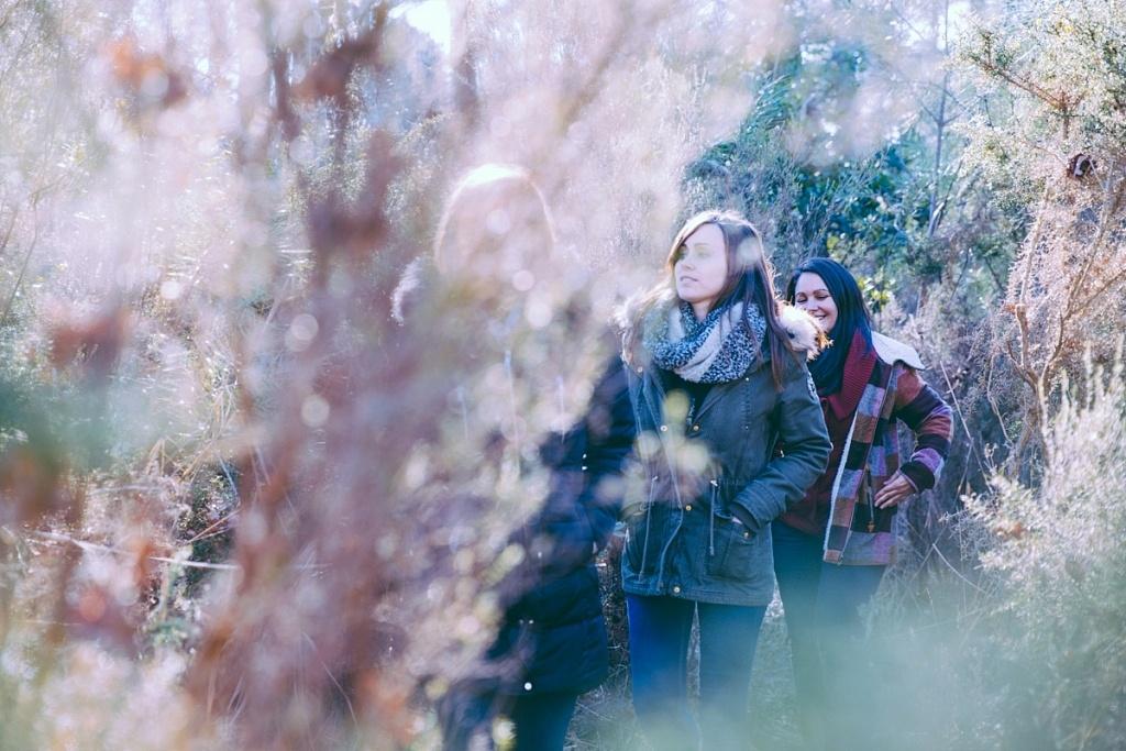 Balade dans les prés salés en hiver