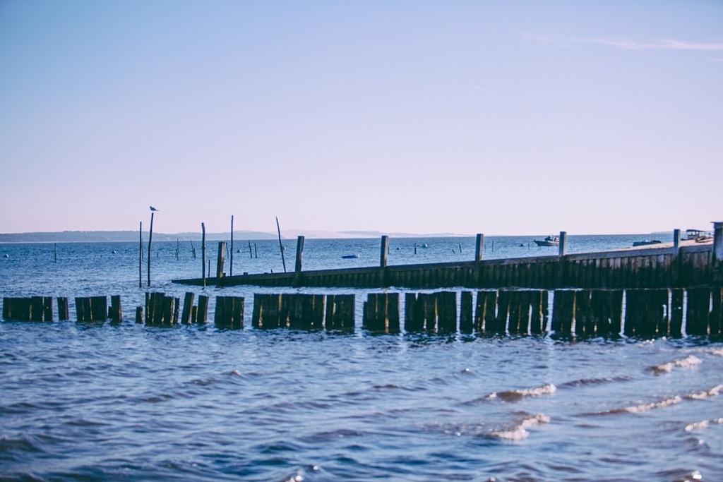 Balade sur les plages du Bassin