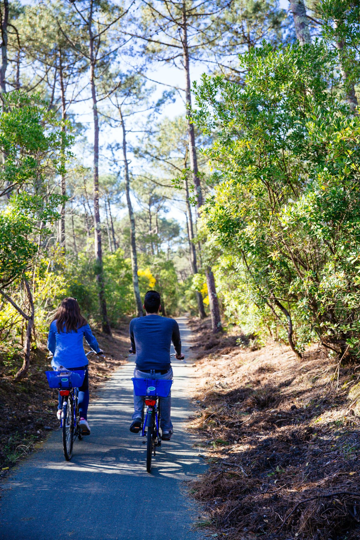 Balade vélo en pleine nature à Lège Cap Ferret