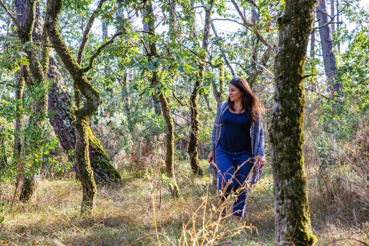 Les prés salés d'Arès Lège à l'automne